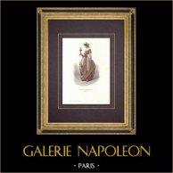 Costume de la Cour de Charles VII de France - Costume de femme (1460) | Gravure originale en taille-douce sur acier dessinée par Compte-Calix, gravée par Portier. Aquarellée à la main. Avec rehauts d'or. 1854
