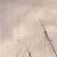 DETTAGLI 01 | Pescatori di Halland - Lago - Mar Baltico - Halland (Svezia)