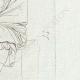 DETTAGLI 04 | Statua di un famoso Greco - Galleria Borghese - Roma