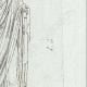 DETAILS 05 | Augustus dressed in toga - Galleria Borghese - Rome