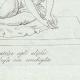 DETTAGLI 04 | La Venere alla conchiglia - Galleria Borghese - Roma