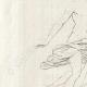 DETAILS 02 | Apollo and Daphne - Gian Lorenzo Bernini - Galleria Borghese - Rome