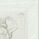 DETTAGLI 03 | Vergine Spartana che danza - Grecia - Galleria Borghese - Roma