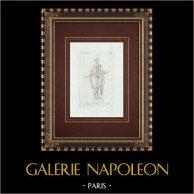 Statua Romana con bulla - Homem na toga - Galleria Borghese - Roma
