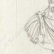 DETAILS 02 | Bust of Lucius Verus - Roman Emperor - Galleria Borghese - Rome