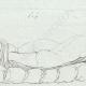 DETAILS 02   Sleeping Hermaphroditus - Galleria Borghese - Rome