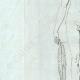 DETTAGLI 02 | Atleta vincente - Nudo Maschio - Galleria Borghese - Roma