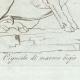 DETTAGLI 04 | Cinghiale del marmo bigio - Galleria Borghese - Roma