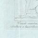 DÉTAILS 03   Vénus avec Cupidon et un monstre marin - Galerie Borghèse - Rome