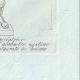 DETTAGLI 08 | Diana cacciatrice - Mitologia romana - Galleria Borghese - Roma