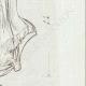 DETTAGLI 04 | Busto d'Iside in marmo - Antico Egitto - Galleria Borghese - Roma