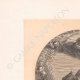 DÉTAILS 01 | Assomption de la Vierge - Anges (Le Titien - Tiziano Vecellio)
