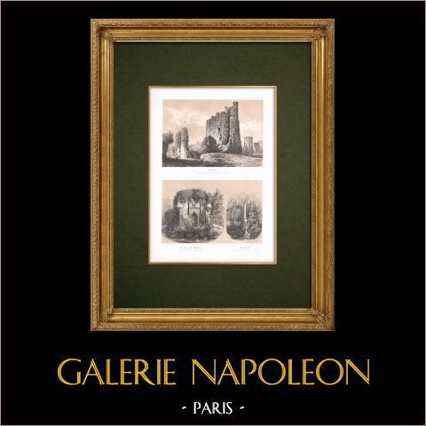 Kasteel van Foujon - Chapelle-godefroy - Paraclete - Overblijfselen - Aube (Frankrijk) |