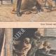 DETTAGLI 02 | Una leonessa salvata da un guardiano - Banditi mascherati attaccano una fattoria - 1908