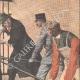 DETTAGLI 03 | Una leonessa salvata da un guardiano - Banditi mascherati attaccano una fattoria - 1908