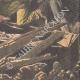 DETTAGLI 06 | Saccheggio di una tomba nel cimitero di Brest - Francia - 1908