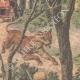 DETTAGLI 02 | Caccia al leone in un parco vicino a Milano - Italia - 1908
