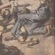 DETTAGLI 06 | Un boa attacca una guardia allo zoo di New York - Stati Uniti d'America - 1908