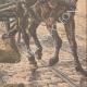 DETTAGLI 04   Un orticoltore attaccato dai ladri a Parigi - 1908