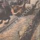 DETTAGLI 06 | Un treno incontra sette tori in il tunnel Cercedilla - Spagna - 1908