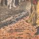 DETTAGLI 05 | Firewalking - Tradizione religiose - Brahmano - Madras - India - 1908