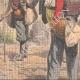 DETTAGLI 04 | Mietitori belgi in Francia - 1908