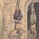 DETTAGLI 01 | Tre esecuzioni in Persia - Supplizio - Impiccagione - 1908