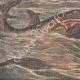 DETTAGLI 03 | Attacco di squali nell'Adriatico - Isole Meleda - Croazia - 1908