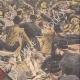DETTAGLI 04 | Sciopero - Combattendo nei paraggi di Bourse du Travail - Parigi - 1908