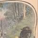 DETTAGLI 03 | Un bambino ferito da un motofalce durante il raccolto - Ham-Haute - 1908