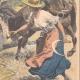 DETTAGLI 04 | Un bambino ferito da un motofalce durante il raccolto - Ham-Haute - 1908