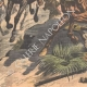 DETTAGLI 05 | Conquista francese del Marocco - Fuga di Moulay Abdelaziz - Marocco - 1908