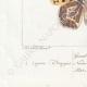DETAILS 07 | Butterflies of Europe - Grand Nacré - Petit Nacré