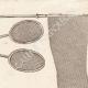 DETALLES 03 | Material para Lepidopterophile