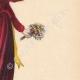 DETALLES 04 | Traje típico de una señora joven de Nettuno (Italia)
