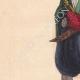 DETTAGLI 02 | Costume di un uomo Bulgaro