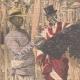 DETTAGLI 02 | Allevamento di struzzi a Toliara - Madagascar - 1909