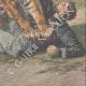 DETTAGLI 06   Un uomo attaccato da una tigre in Congo - 1909