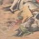 DETAILS 05 | Tragic bullfight in Seville - Spain - 1909