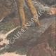 DETTAGLI 06 | Un uomo normanno naufragato su una roccia presso le Minquiers - Jersey - 1909