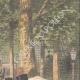 DETTAGLI 03 | Un noce attraversa le strade di Berlino col pattini a rotelle - Germania - 1909