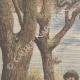 DETTAGLI 01   Due ubriaconi coprono un ragazzo col formice in Eymoutiers - Francia - 1909