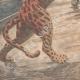 DETTAGLI 05 | Un giaguaro in libertà sul ponte di una nave, sbarca a New York - 1909