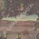 DETTAGLI 01 | Chantecler - Edmond Rostand - Uccelli da notte - Parigi - 1910