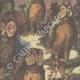 DETTAGLI 02 | Chantecler - Edmond Rostand - Uccelli da notte - Parigi - 1910
