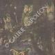 DETTAGLI 03 | Chantecler - Edmond Rostand - Uccelli da notte - Parigi - 1910