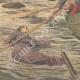 DETTAGLI 05 | Naufragio del Transatlantico General Chanzy - Cadaveri e relitti - Spagna - 1910