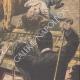 DETTAGLI 04 | Un leone rapisce un bambino in un teatro di Cleveland - Stati Uniti d'America - 1910