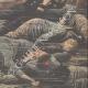 DETALJER 06 | Hyllning till de döda i ubåten Pluviose - Calais - Frankrike - 1910