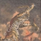 Einzelheiten 03 | Tod der Menagerietiere im Feuer die Brüssel International - Belgien - 1910